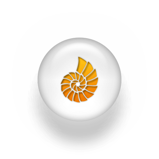 014156-orange-white-pearl-icon-animals-animal-seashell2-sc44